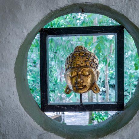 vida asana buddha
